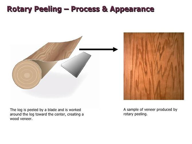 Rotary Cut vs Flat Cut Veneers