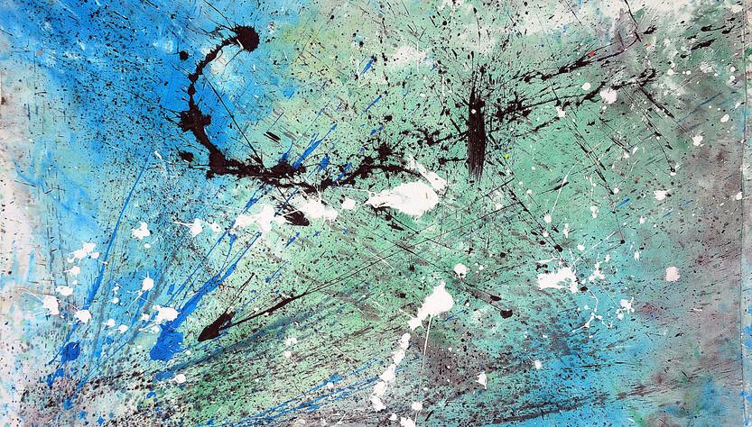 Universo acquatico