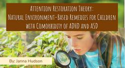 Attention Restoration Theory (ART)