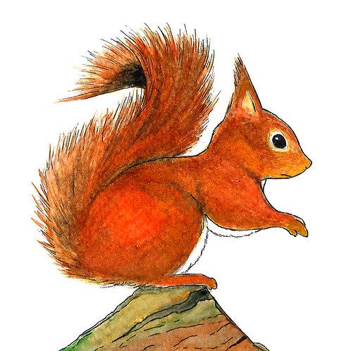 """Carnet à rabats """"L' écureuil"""""""