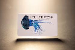 Raised Spot UV Lux Business Card