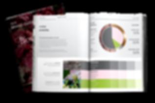 Brand Guideline - Blossomland Aligned