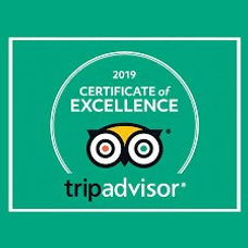 certificate excellence2019.jpg