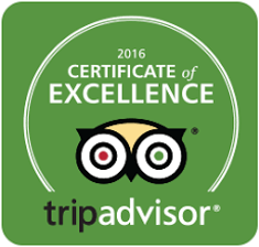 certificate excellence2016.png