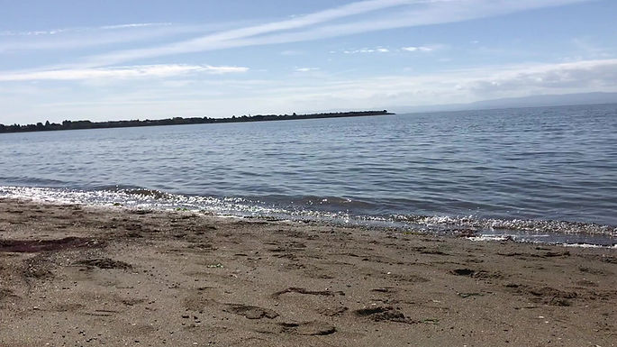 Blissful experience with yoga on the bech in Alameda, CA