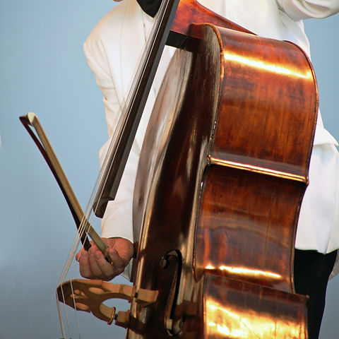 man-person-music-concert-instrument-musi