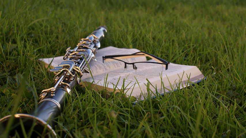 grass-music-lawn-green-agriculture-bible