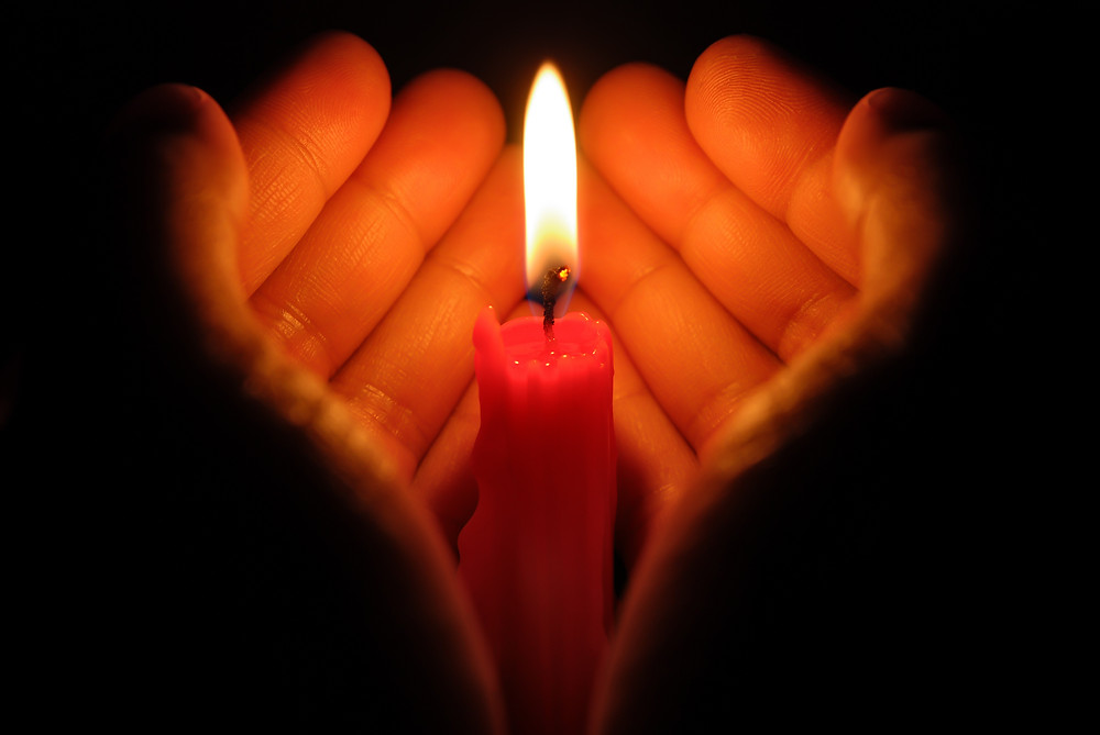 Igniting Compassion in the World