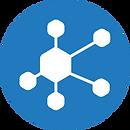 bel_network.png