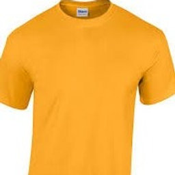 Gold Gym T Shirt with Logo