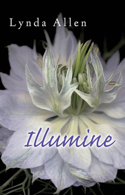 Illumine