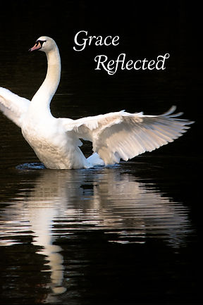 Grace Reflected Front Cover without name