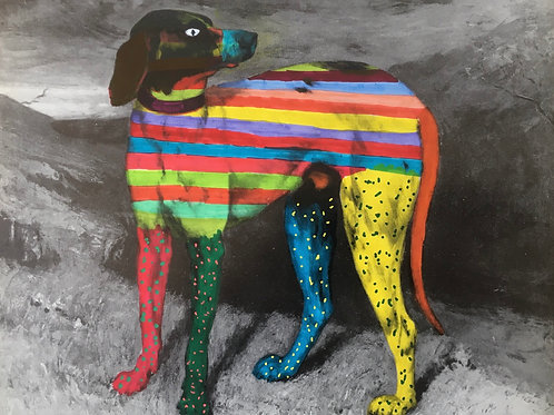 Dog With Stripes And Spots. 8 x 6.5 inches.