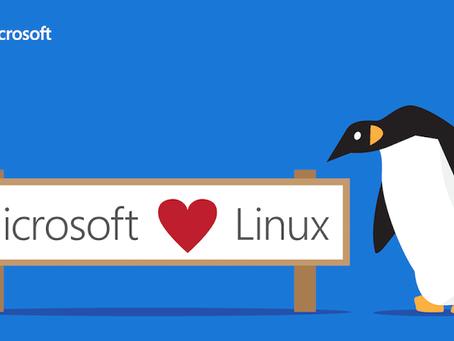 A relação de amor entre Microsoft e Linux