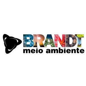 SITE_0000_Camada-1.png