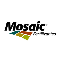 SITE_0007_mosaic.png