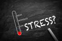 EUstress e DIstress