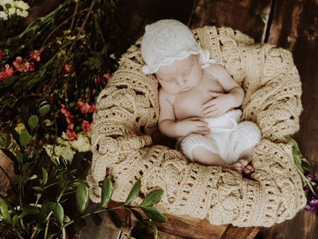 Leap Baby Rustic Newborn Girl Session   Olga + Jose Studios, Niles Il.