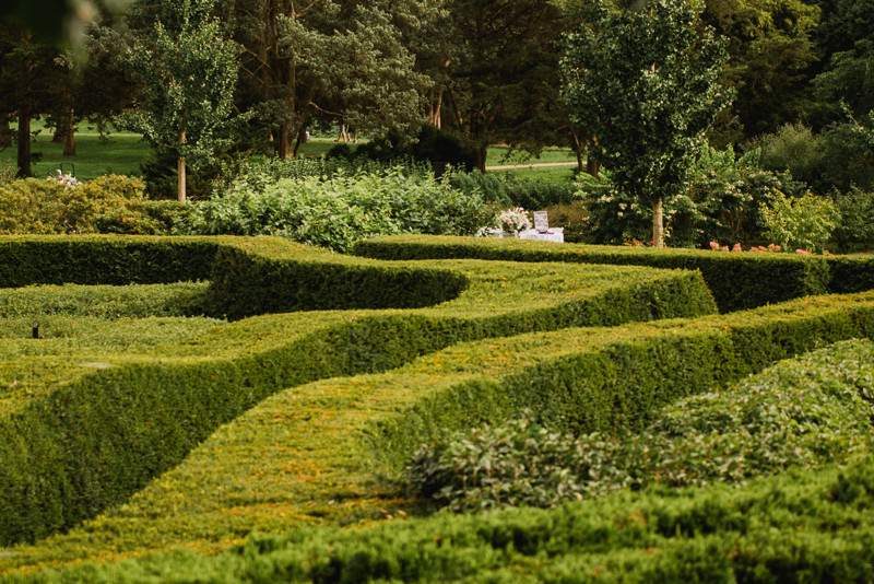 Wedding Alter setup featuring hedge maze at Morton Arboretum