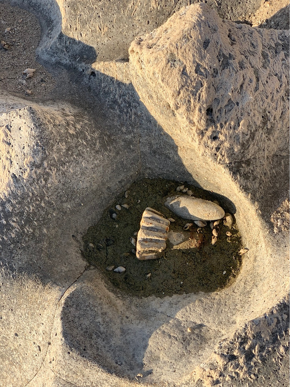 Out on my walk the other day, I found this in the river bed. A rock and an old gear piece -- together they swirl away at the basalt to form something new.  I thought it was a good metaphor for what we're dealing with in the world today.