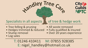 Handley Tree Care - Chesterfield Local -