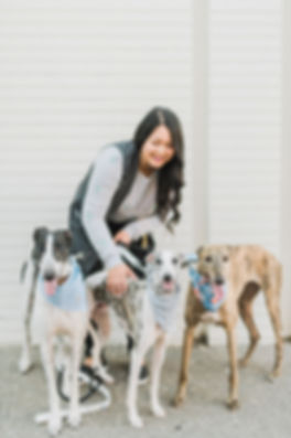 Photo of Rhonda Law (BARK YYC) with three sighthounds by Jamie Hyatt Photography for Dote Magazine