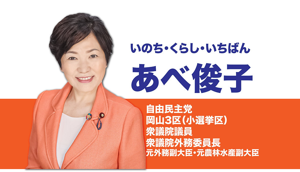 衆議院議員あべ俊子.jpg