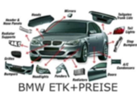BMW_diagnose_software_large.png
