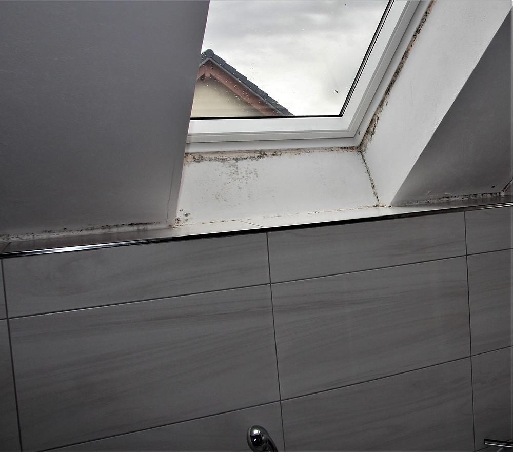 Schimmelpilzbildungen an einer Außenwand mit Dachfenster hinter einer Badewanne.