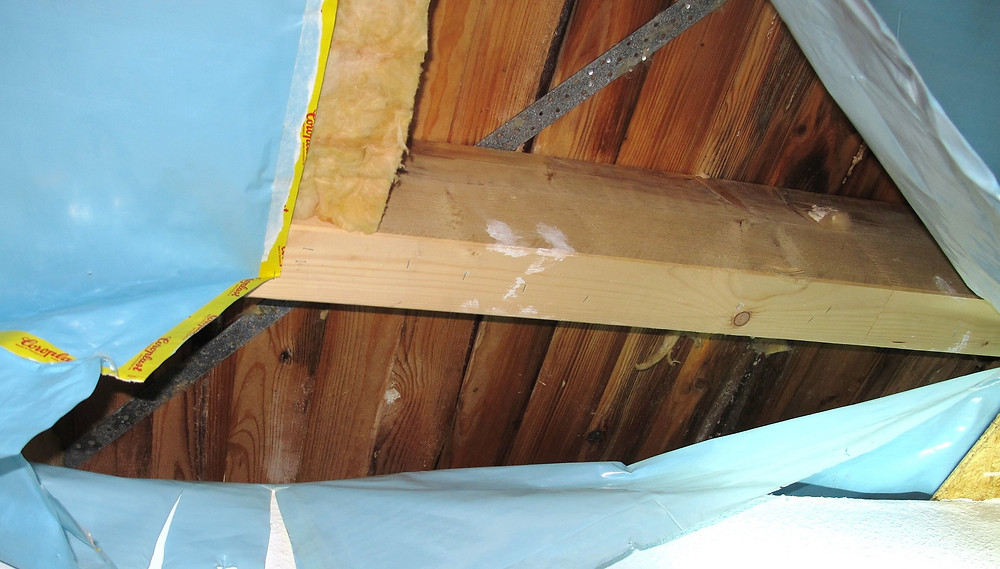 Flache Dächer mit Vollsparrendämmung sind kritisch für holzzerstörende Pilze