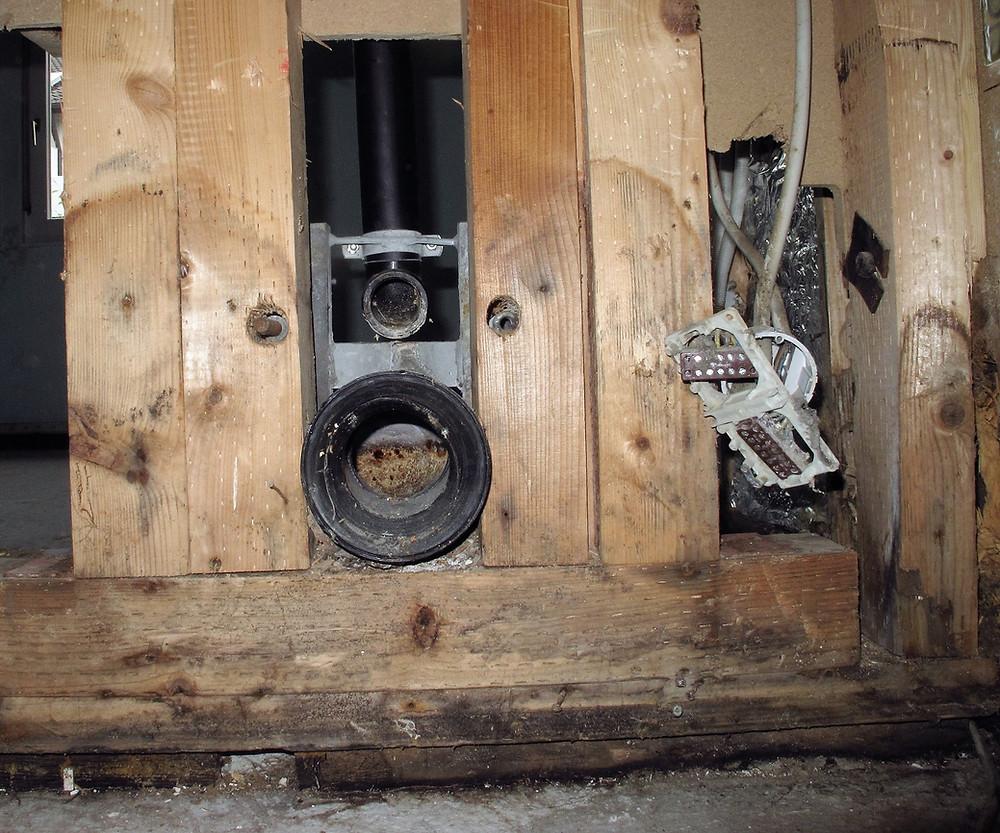 Die Holzpilze gingen vom Anschluss der Toilette aus