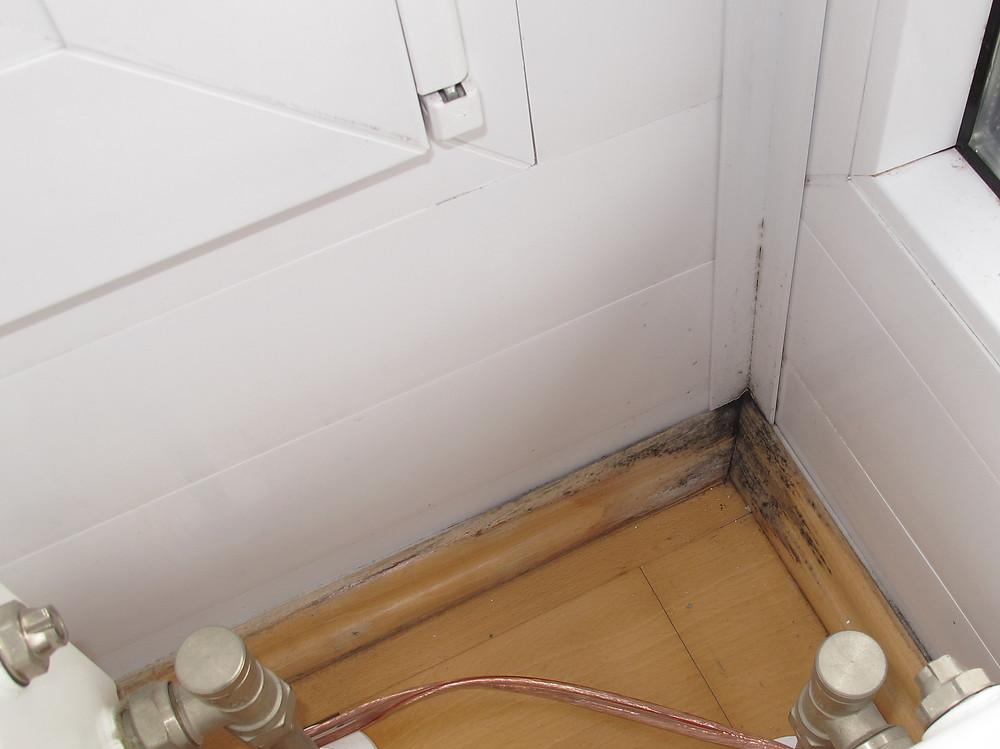 Feuchteschaden in der Wohnung durch Wassereintritt von außen.