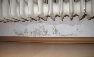 Feuchteschäden am Wandsockel innen unter einem Heizkörper aufgrund fehlender Horizontalabdichtung