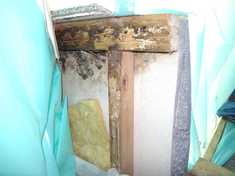 Die Terrassenbrüstung war in einer Holzkonstruktion erstellt und nicht fachgerecht abgedichtet.