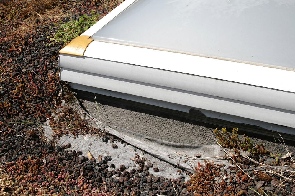 Anschluss einer Dachbegrünung an ein Oberlicht