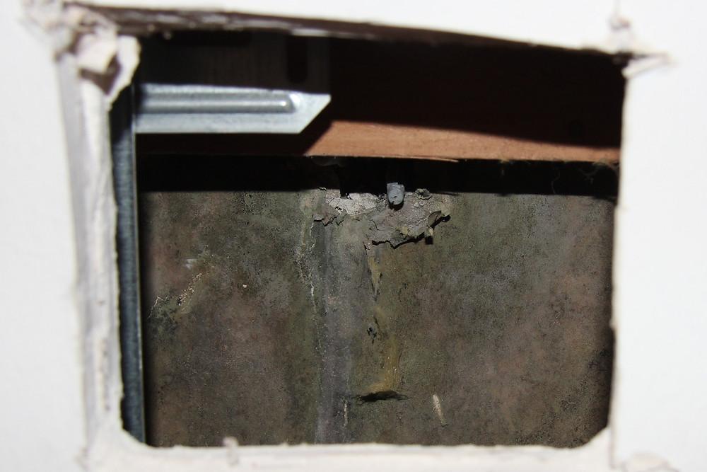 Unterhalb der Befestigungsstelle der Handbrause waren intensive Schimmelpilzbildungen an der Hohlraumseite der Bekleidung aus Gipskartonplatten vorhanden.