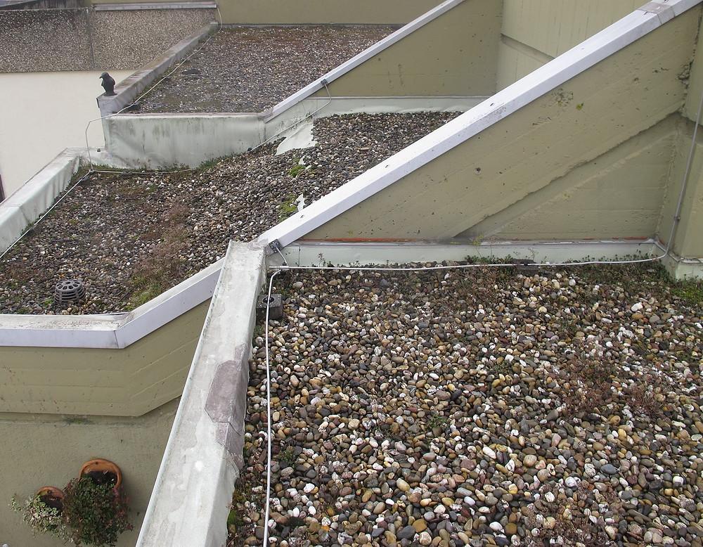 Eine regelmäßige Wartung von Flachdächern dient der Vorbeugung und dem Werterhalt