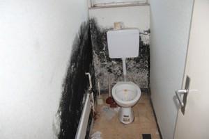 Extreme Schimmelbildung in einer Toilette durch Feuchtigkeit von außen