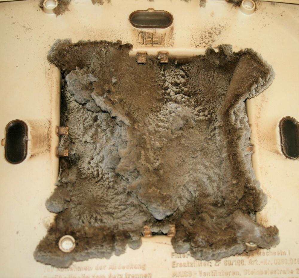 ÜbÜbersichtsbild des geöffneten Abluftventilators, das Filtervlies war intensiv verschmutztersichtsbild des geöffneten Abluftventilators.
