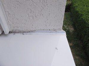 Zwischen der Aufkantung der Fensterbank und dem Putz kann Wasser in die Wand eindringen.