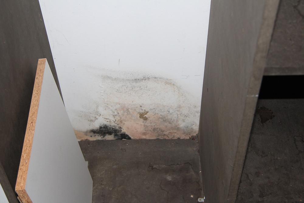 Trennwand zwischen Abstellraum und Badezimmer;  Feuchteerscheinungen im Sockelbereich.