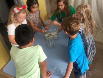 Healthy eating in Benjamin Preschool - Senec