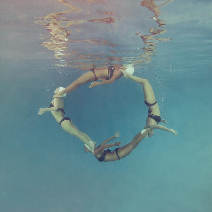 Dolphin Circle