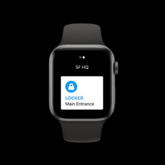 Kisi for Apple Watch