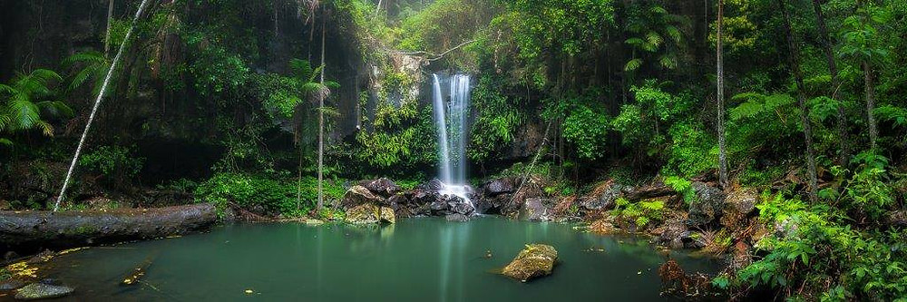 Rainforest Waterfall - Taken with the LEP-01