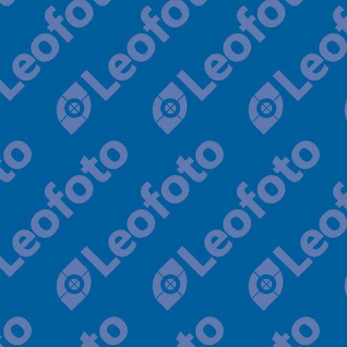 Leofoto QDC-22 22mm Quick Release (QD) Collar for Tripod Leg