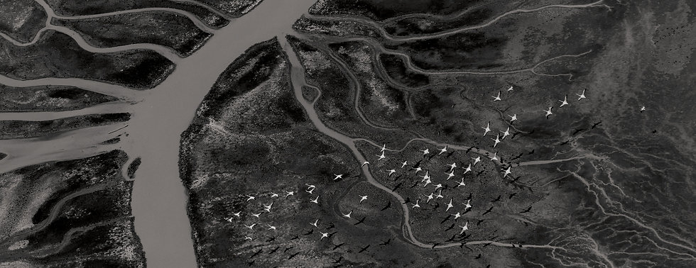 Black Volta River cropped.jpg
