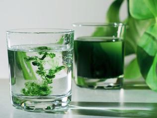 TikTok and Chlorophyll?