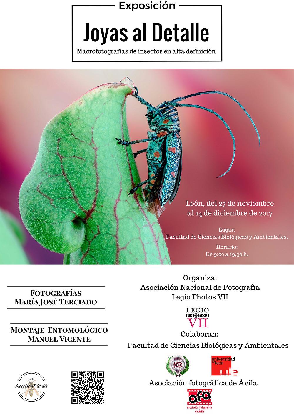 Exposición en León 2017