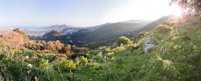 007 Aegean Residence Site.jpg